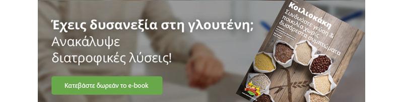 banner-ebook-koiliokaki